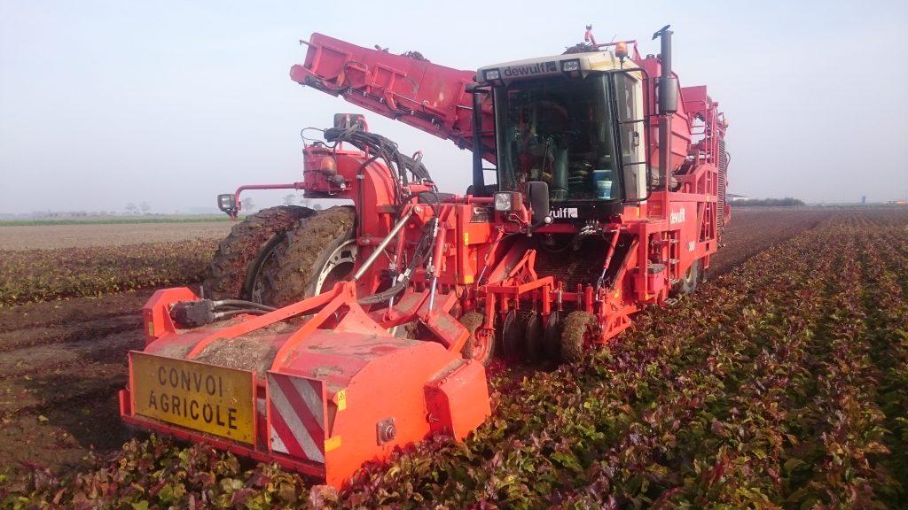 Dewulf Ra3060 rode bieten kroten rooien oogsten