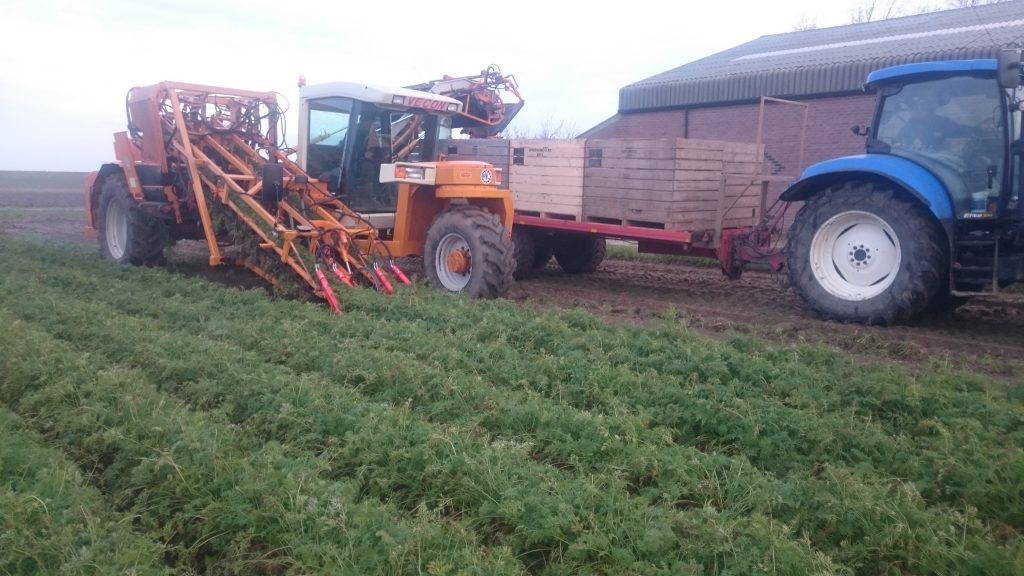 RVL zelfrijdende klembandrooier peen wortels plukken
